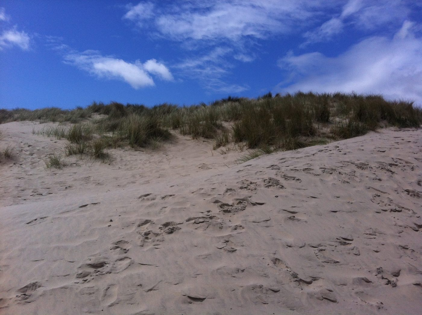 Curracloe-Beach-2